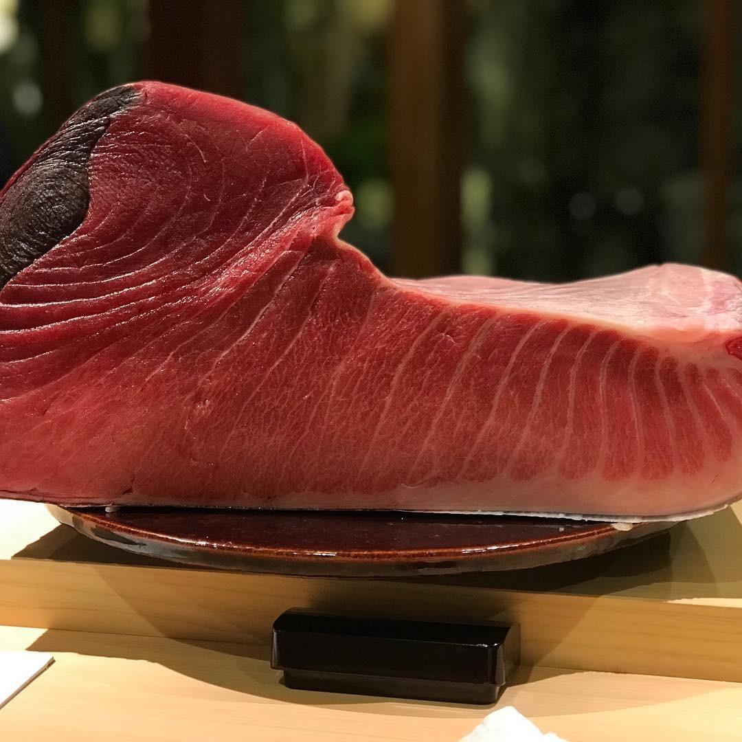 Misakikou Ippon Maguro 三崎港 一本金枪鱼